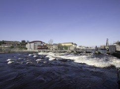 River Moy gets its first Salmon of the season