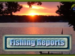 Western River Basin District IFI Ballina   Angling report – w/e 21st August 2016