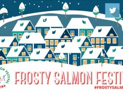 Frosty Salmon Festival in Ballina Co Mayo